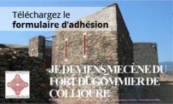Adhésion projet FORT DUGOMMIER